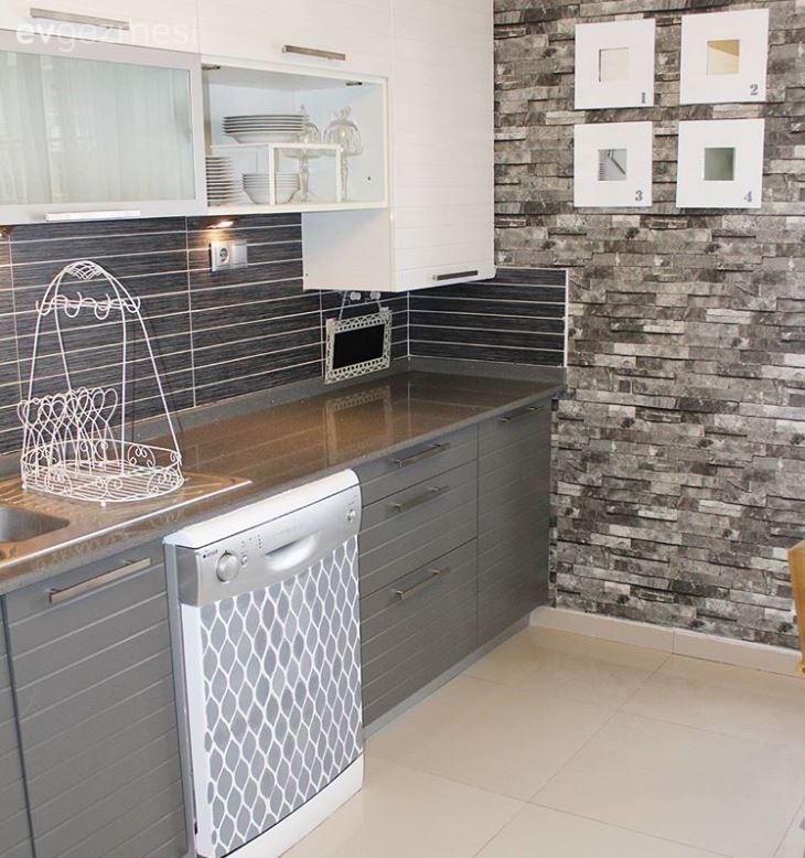 Sina Hanımın Buzdolabını Ve Bulaşık Makinesini Boyadığı Modern